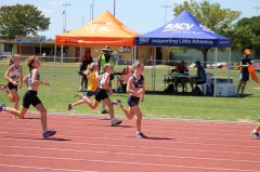 SLAC36_NCR_Track_and_Field_Albury_210216_158.jpg