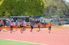 SLAC36_NCR_Track_and_Field_Albury_210216_165.jpg